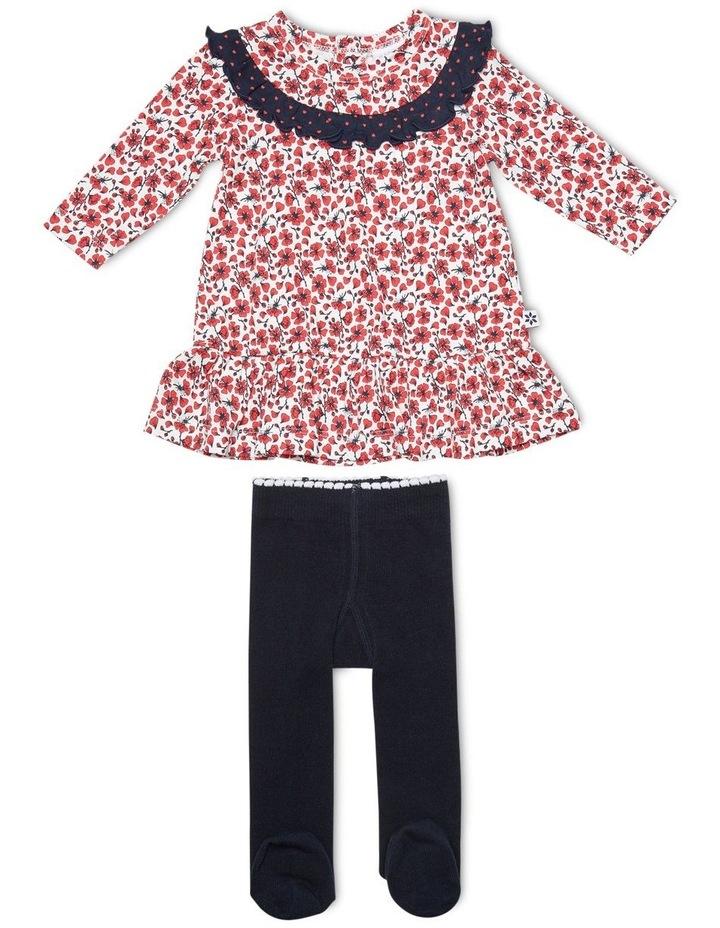Dress & Tights image 1