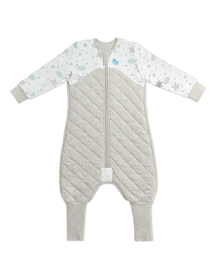 Sleep Suit 2.5 Tog image 1