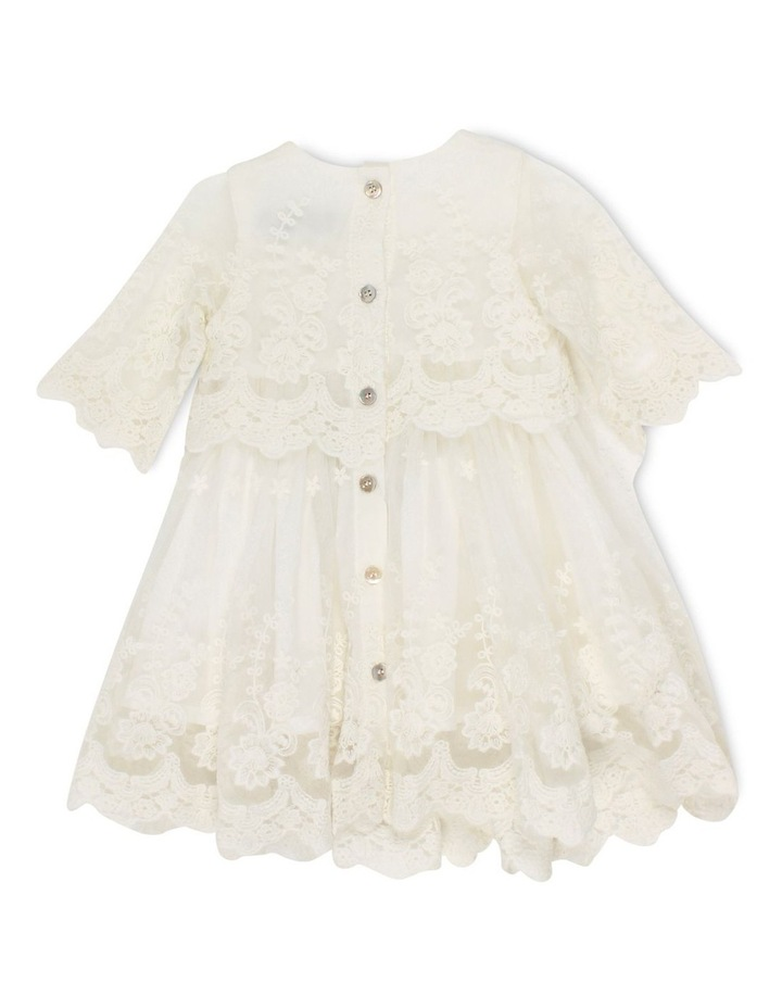 Short Sleeve Lace Overlay Dress image 2