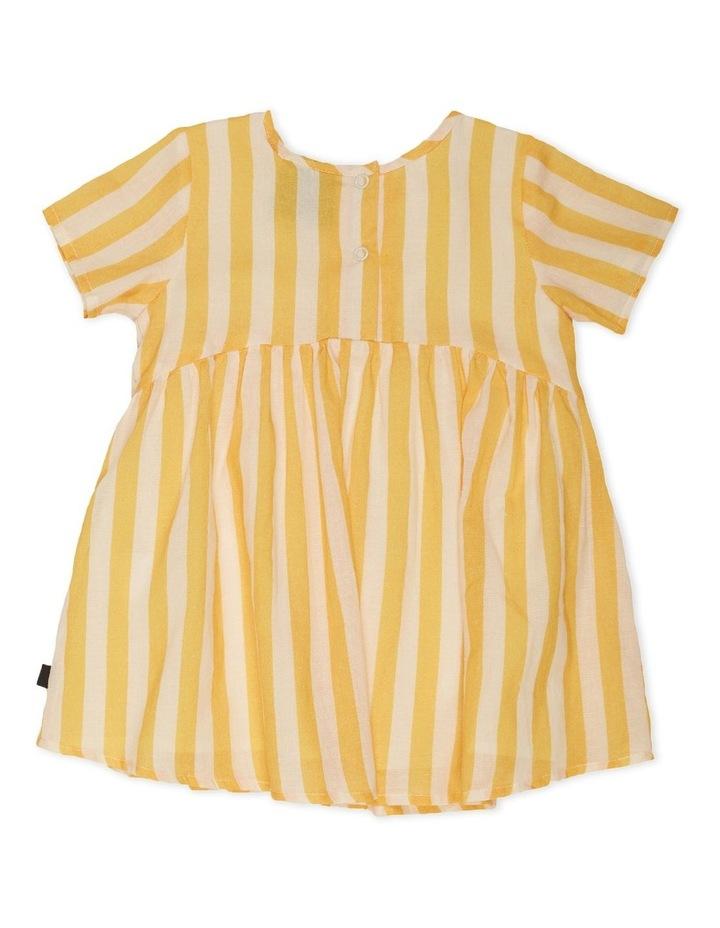 Santa Rosa Dress image 2
