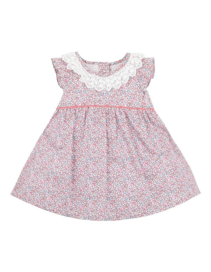 Liberty Lace Collar Dress image 1