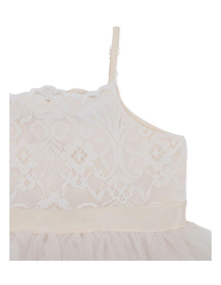 Champagne Lace Bodice Dress Ivory image 3