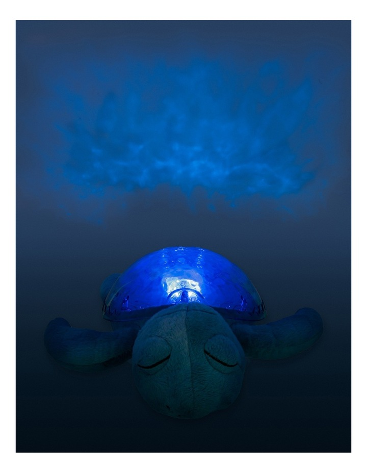 Tranquil turtle image 4