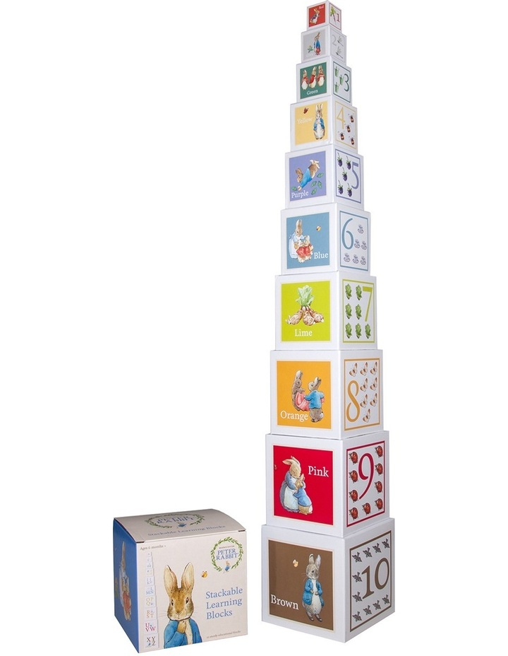 Peter Rabbit building blocks image 2
