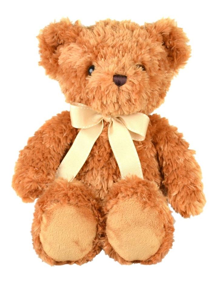 141124719c7 Winston Teddy Bear image 1