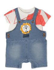 Boys T/Shirt and Shortall Set