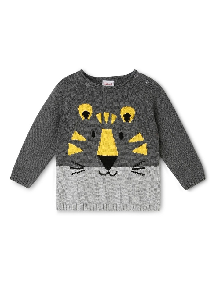 Knit Pullover image 1