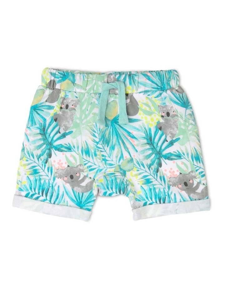 Australiana Knitted Koala Shorts image 1