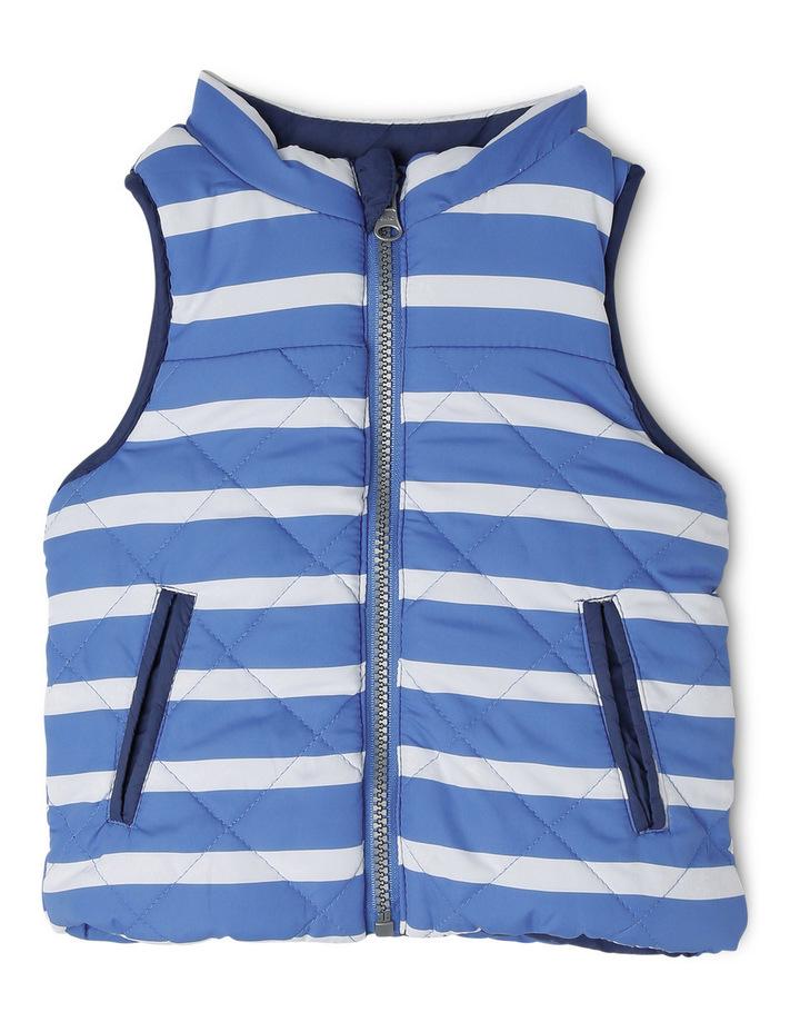 Reversible Vest image 2