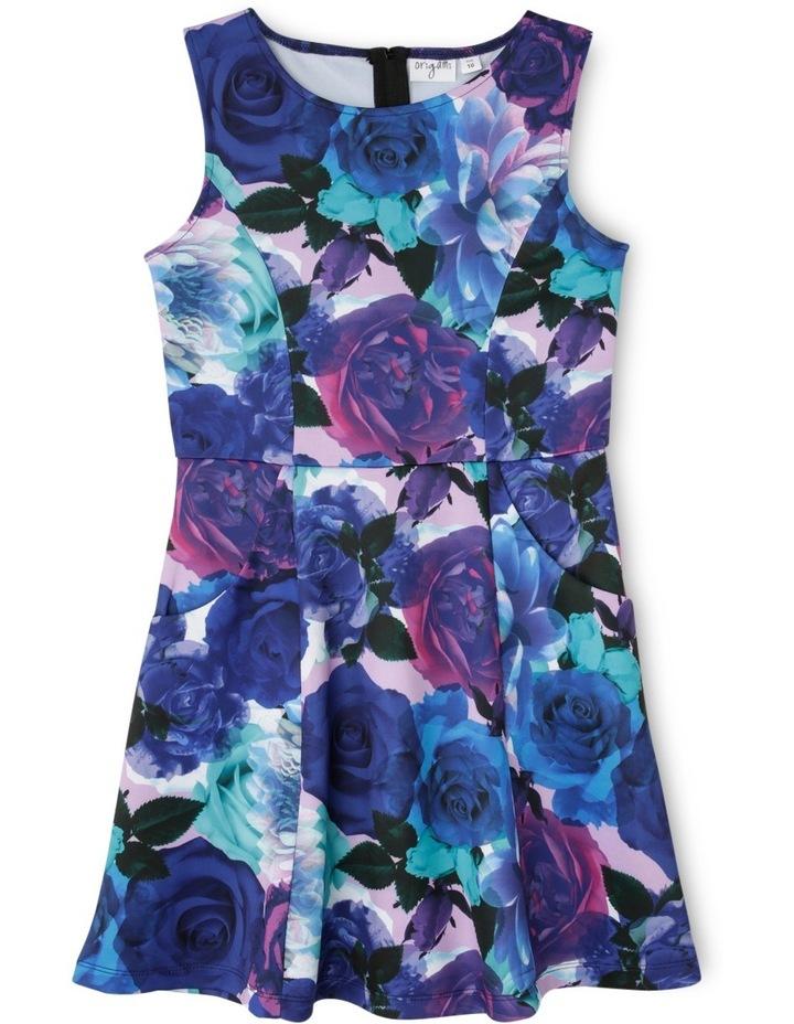 SG Winter Floral Scuba Dress 9-16 image 1