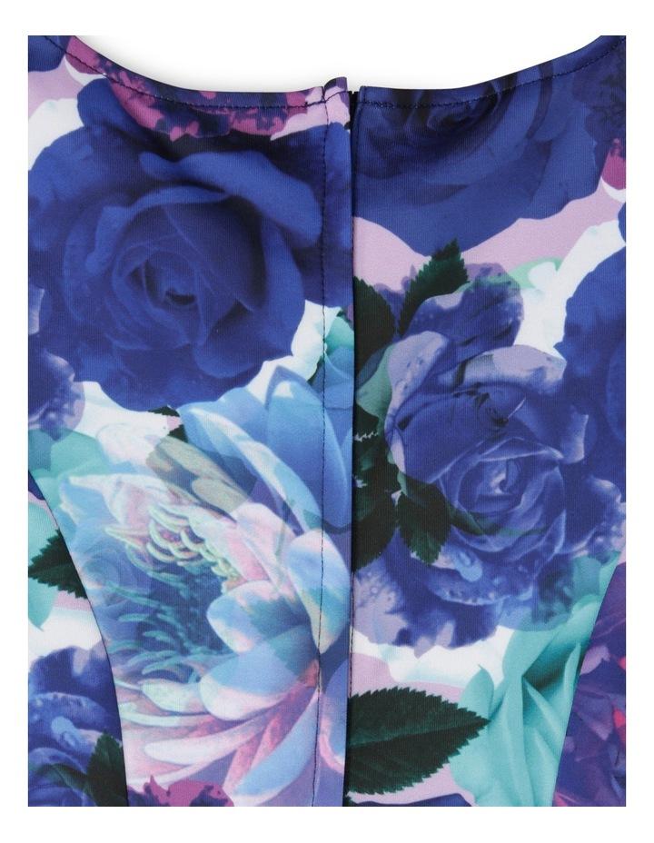 SG Winter Floral Scuba Dress 9-16 image 3