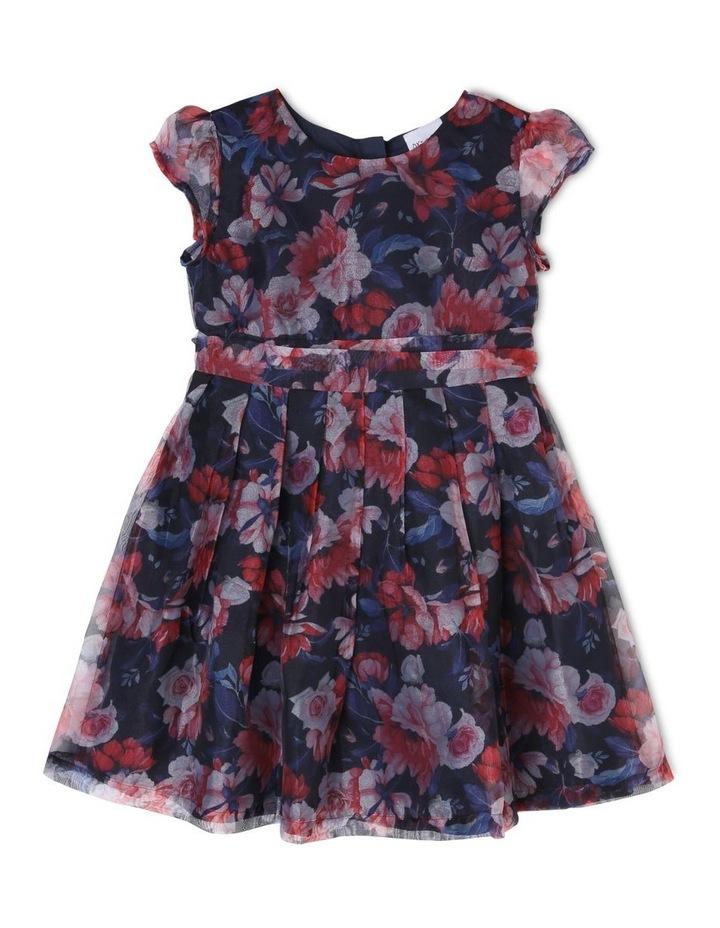 Christina Rose Organza Dress (0-2 Years) image 1