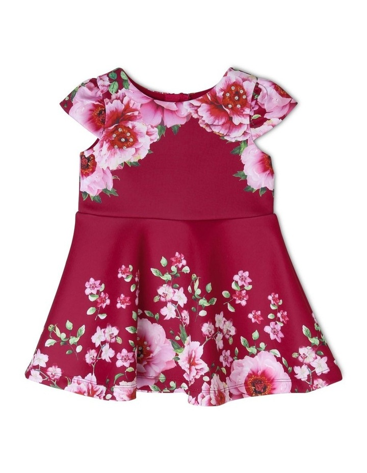 Isabelle Floral Dress (0-2 Years) image 1