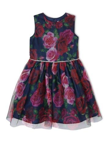 1375ea45c001 Girls Dresses