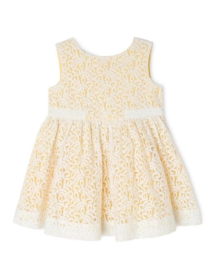 Zoe Woven Lace Dress image 1