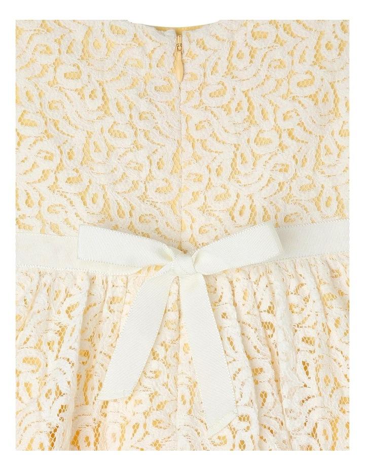 Zoe Woven Lace Dress image 4