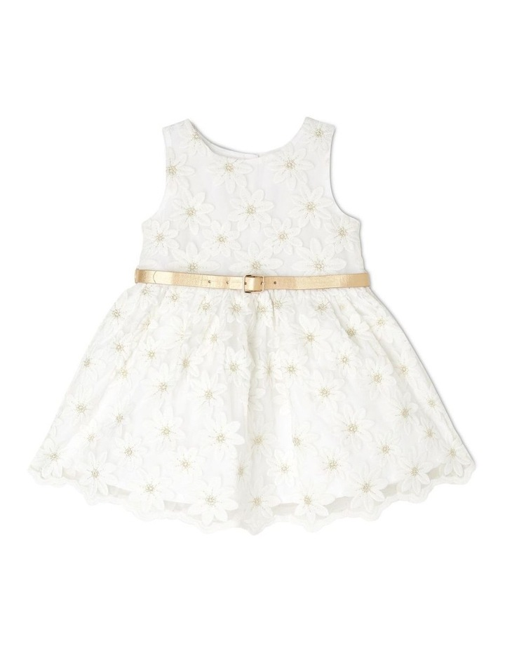 Harriet Woven Organza Dress with Belt (0-2 Years) image 1