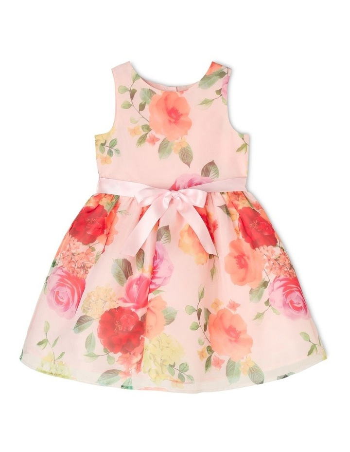 Florence Woven Organza Party Dress (3-8 Years) image 1