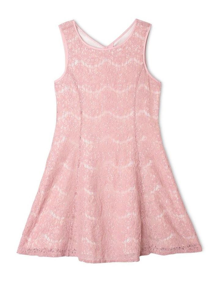 Rose Sequin Lace Shift Dress image 1
