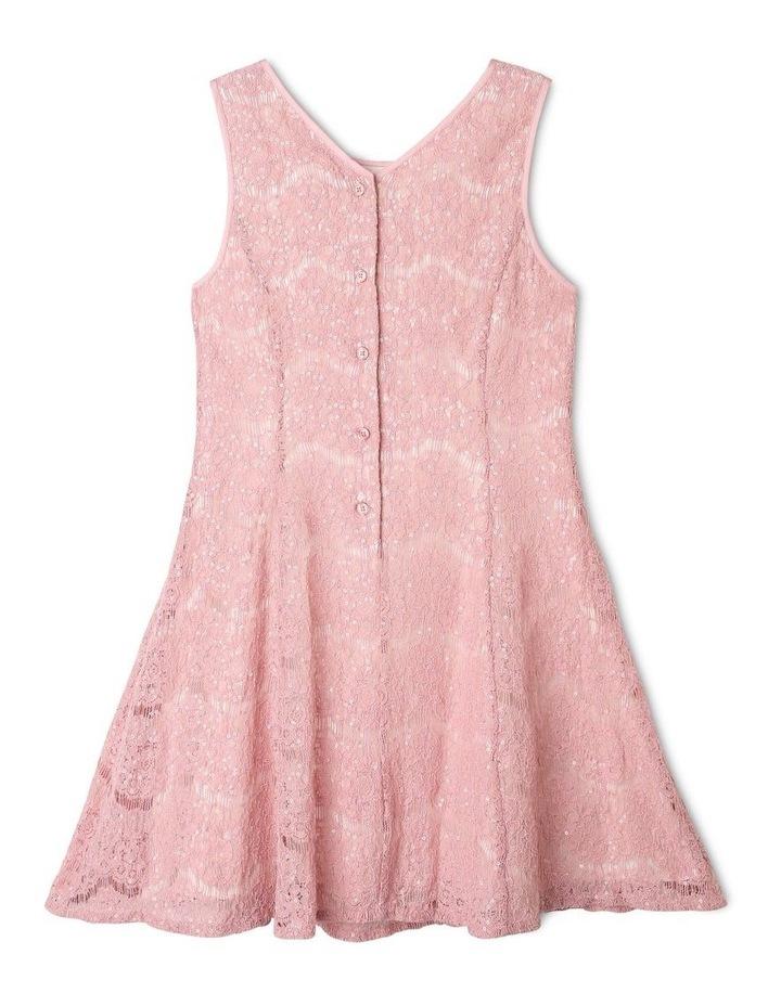 Rose Sequin Lace Shift Dress image 3
