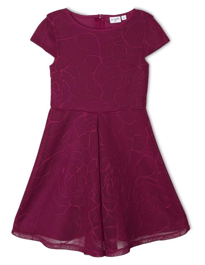 Imogen Embroidered Mesh Dress image 1