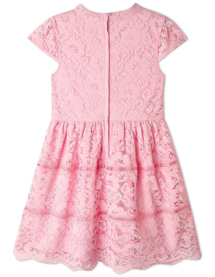 Ginger Lace Skater Dress (9-16 Years) image 2