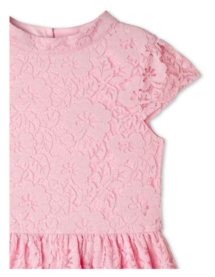 Ginger Lace Skater Dress (9-16 Years) image 3