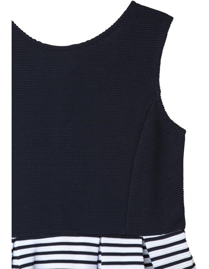 Zara Ottoman Navy Stripe Dress image 3