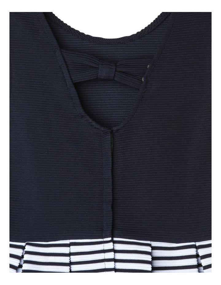 Zara Ottoman Navy Stripe Dress image 4