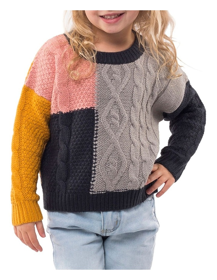 Link Panelled Knit image 1