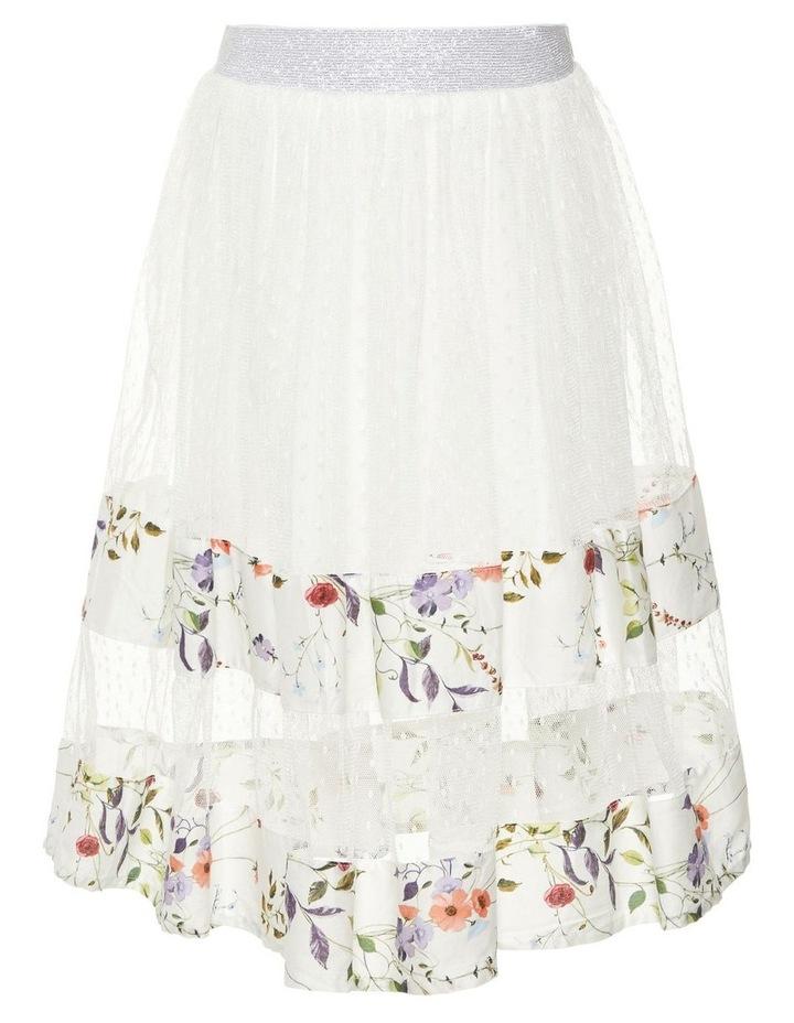 Long Tulle Skirt image 1