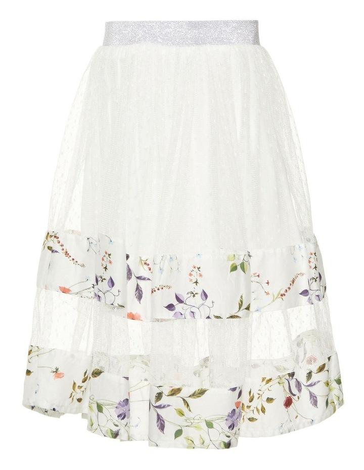 Long Tulle Skirt image 2