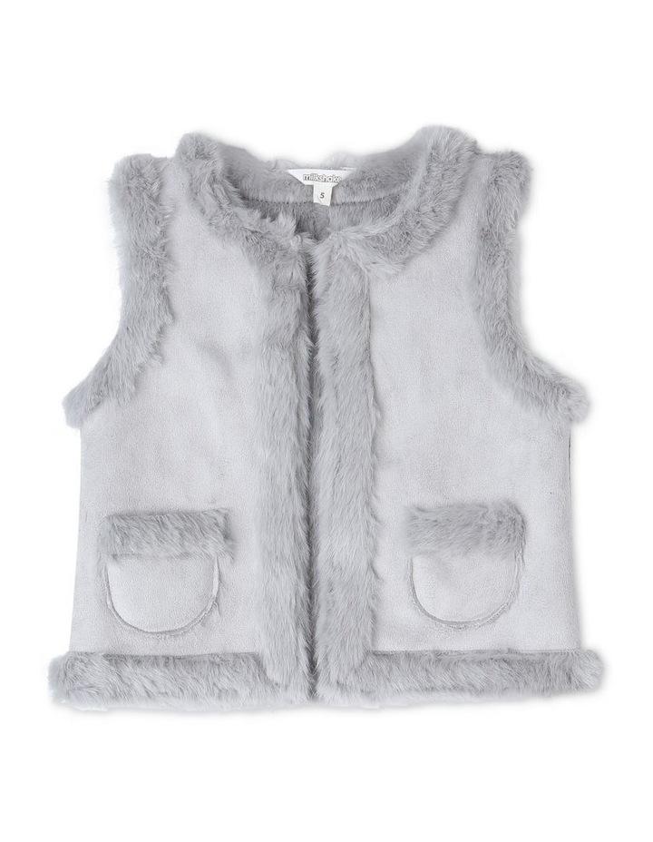 Suedette Fur Vest image 1