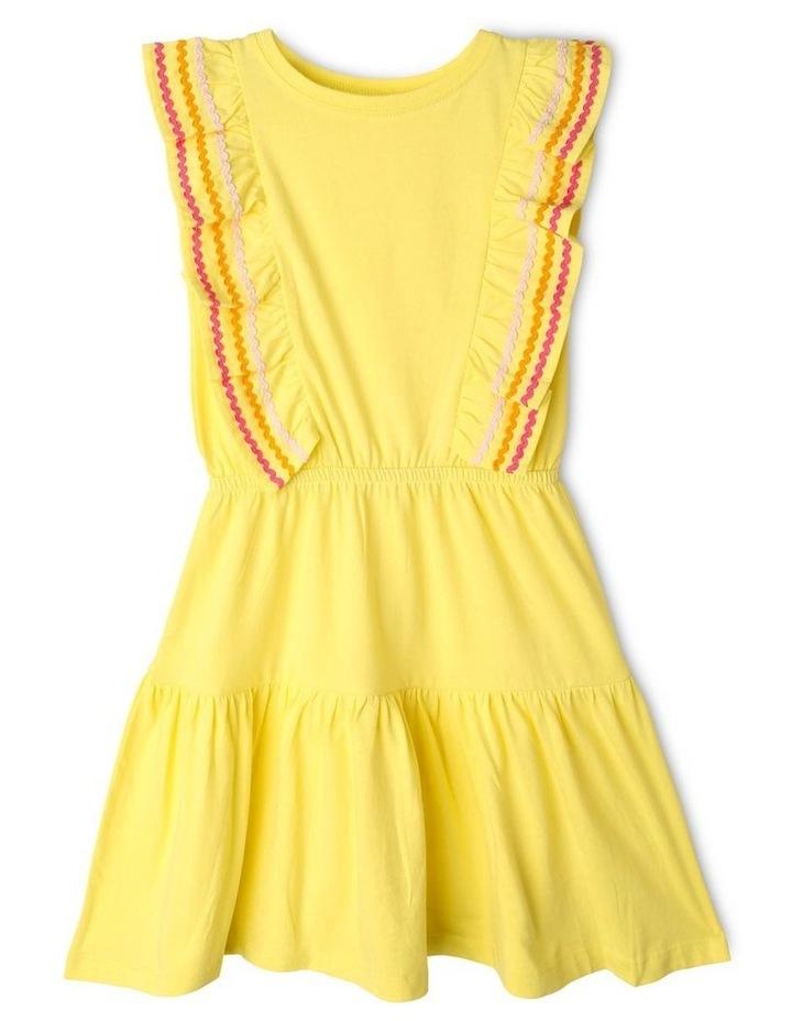 Ric Rac A-Line Dress image 1
