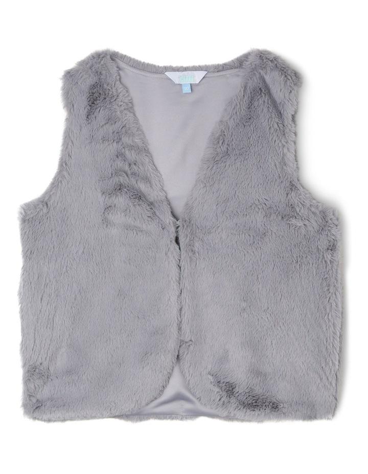 Fur Vest image 1
