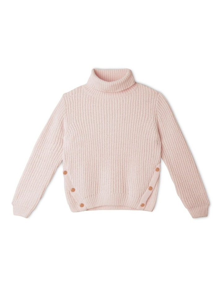 Chenille Roll Neck Jumper image 1