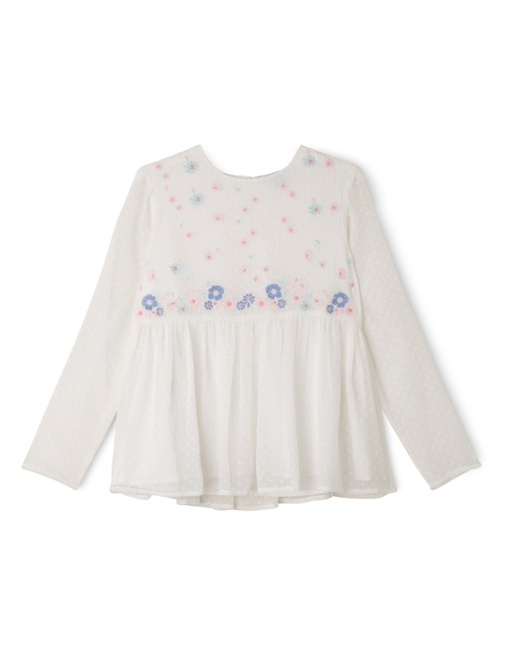 Hailspot Embroidered Blouse image 1