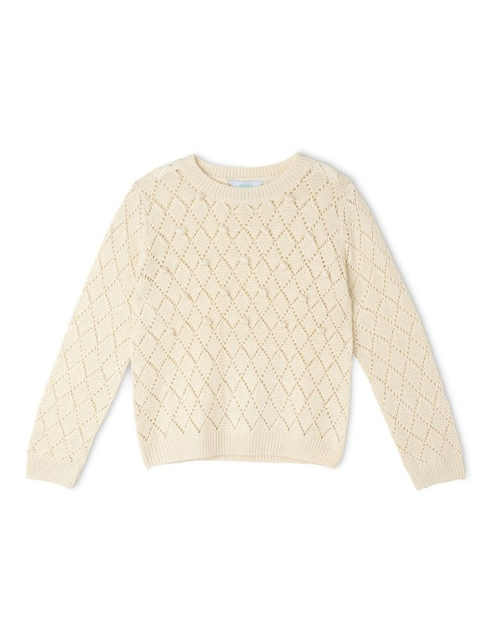 Knitted Jumper With Bobbles image 1
