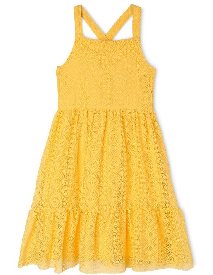 Woven Lace Dress image 1