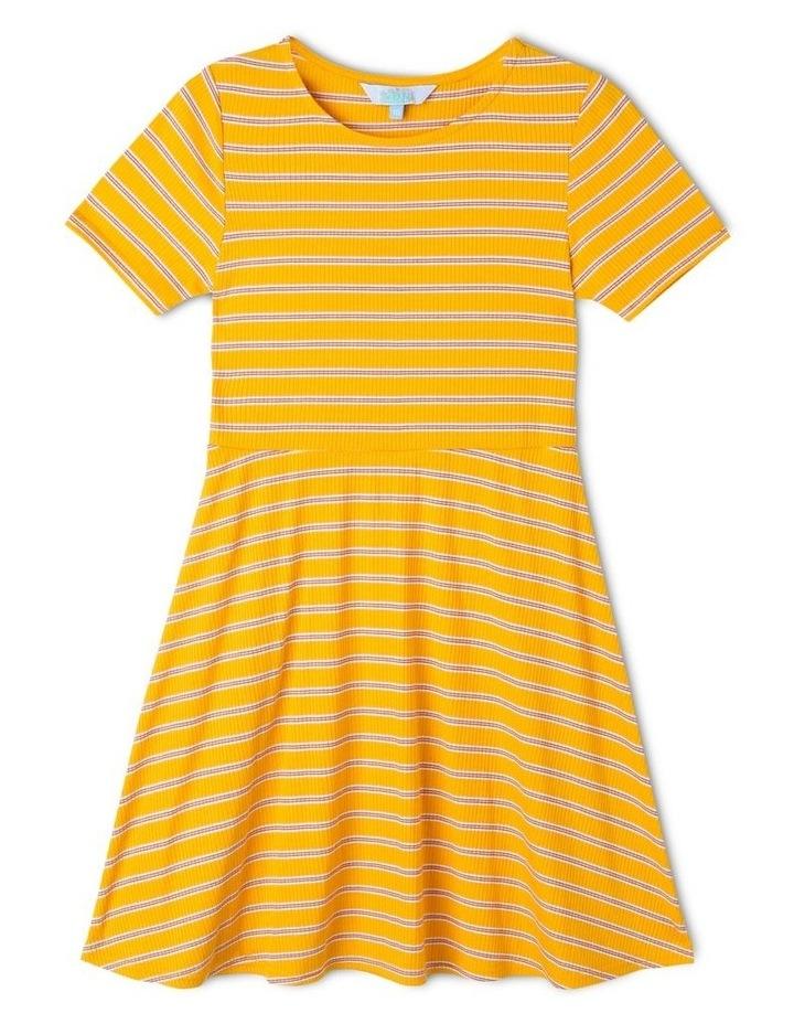 Rib Knit Skater Dress image 1