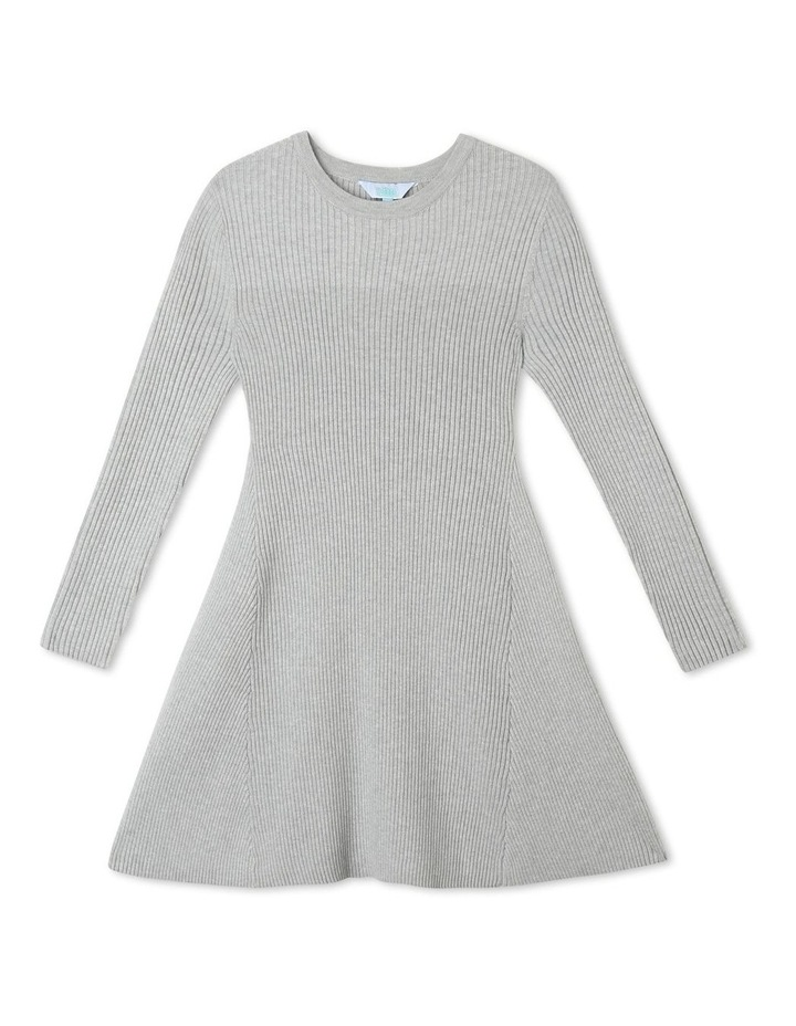 Knitted Skater Dress image 1