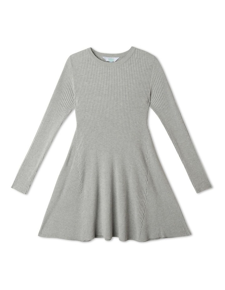 Knitted Rib Skater Dress image 1