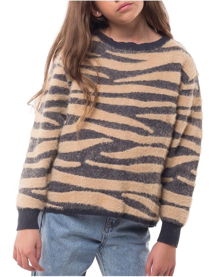 Zebra Fluffy Knit image 1