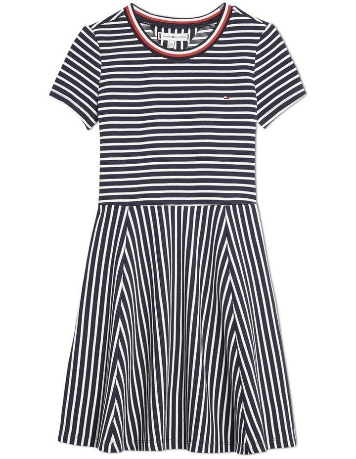 Stripe Skater Dress image 1