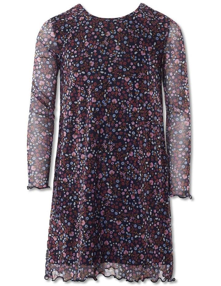 Blossom Mesh Dress image 1
