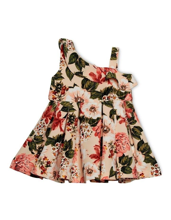 Ebony Dress 000-2 image 1