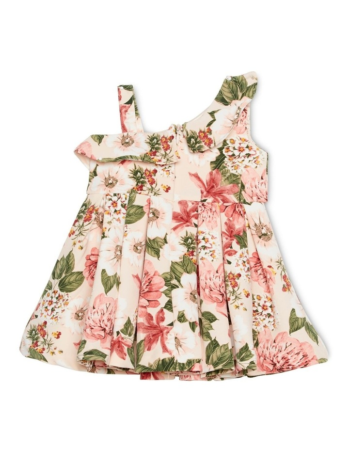 Ebony Dress 000-2 image 2