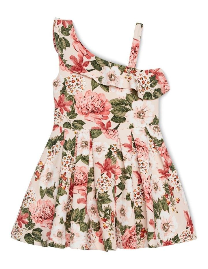 Ebony Dress image 1