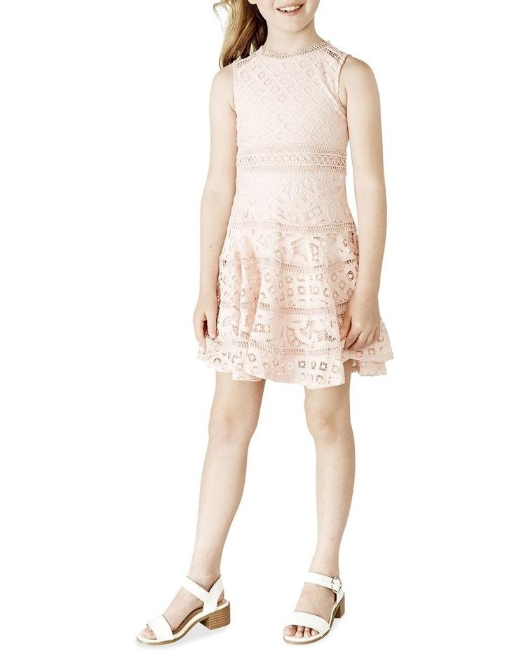 Elise lace Dress 3-7 image 1