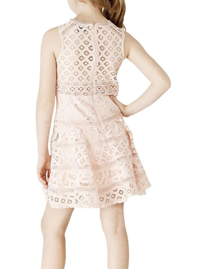 Elise lace Dress 3-7 image 2
